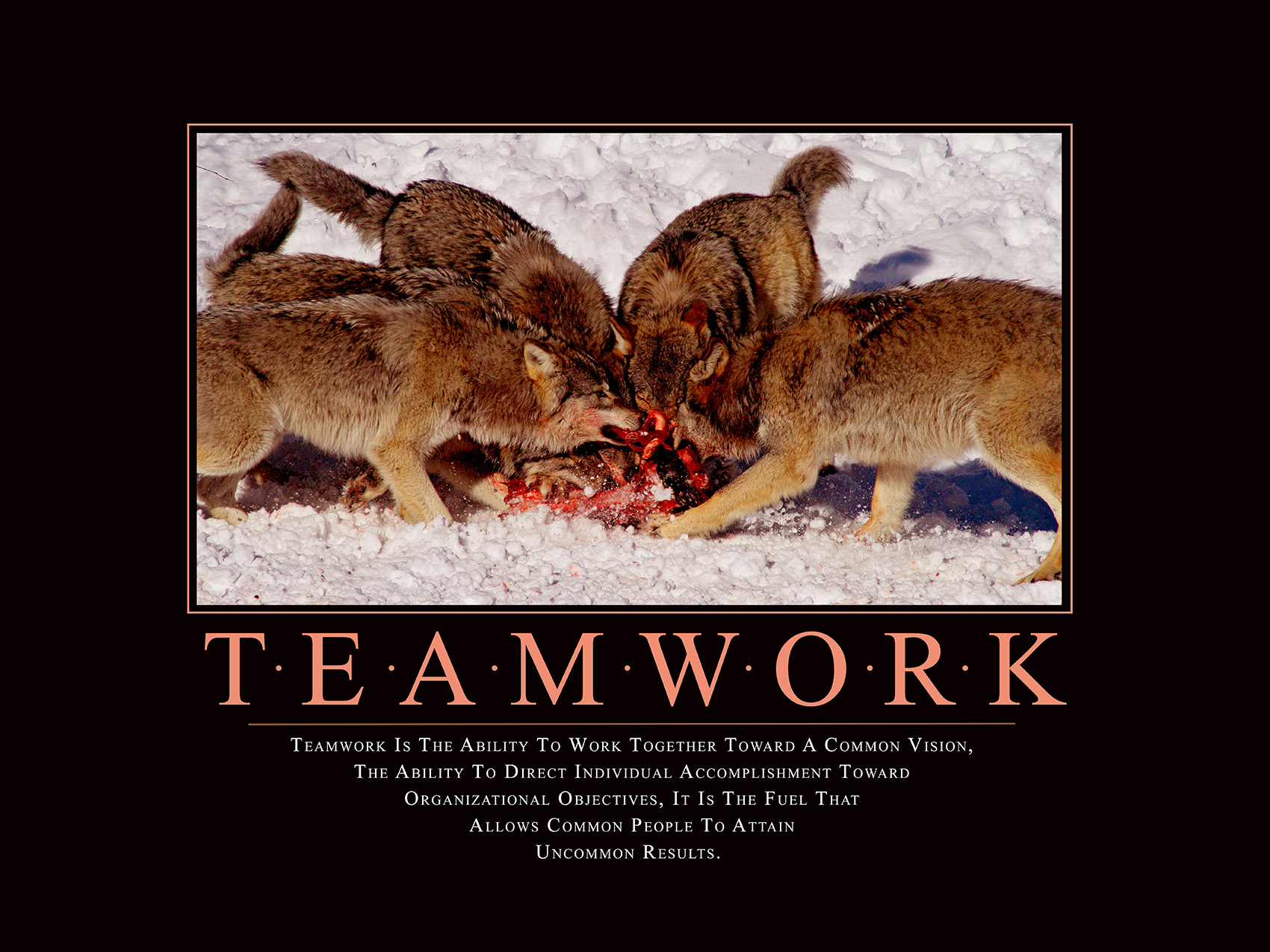 frightli-MotivationalPoster-Teamwork